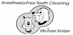 Anesthesia Free Teeth Cleaning For Dogs Phoenix Az
